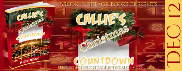 Callies Christmas Countdown Banner