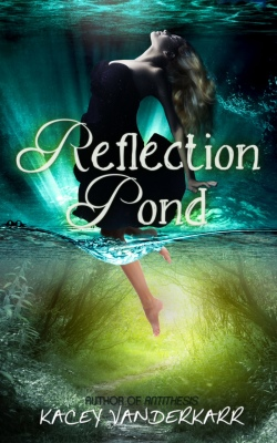 Reflection-Pond-ebook-1-Van 1