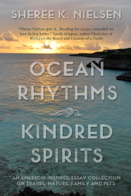 Ocean Rhythms eBook Cover Large