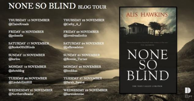None So Blind Blog Tour Poster (1)