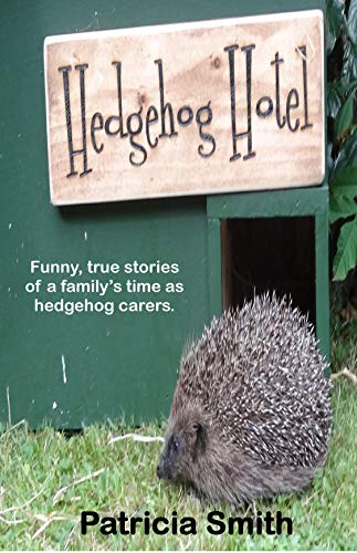 hedgehog hotel