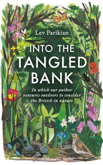 into the tangled bank